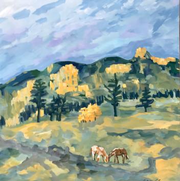 Solstice in the Upper Meadow