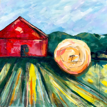 Teller Farm