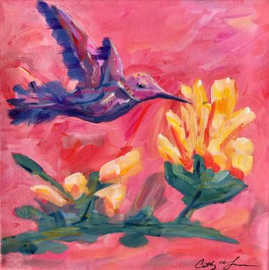 Humming Bird on Yellow Flower