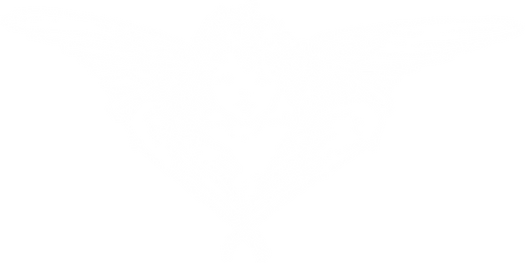 Felly-Angel_3.png