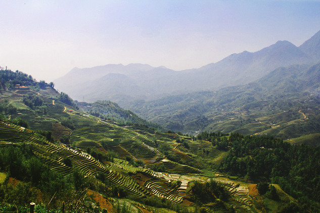 mountain terrace.jpg
