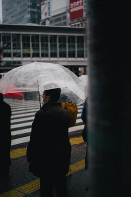 shibuya rain