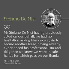 Stefano De Nisi Review.png