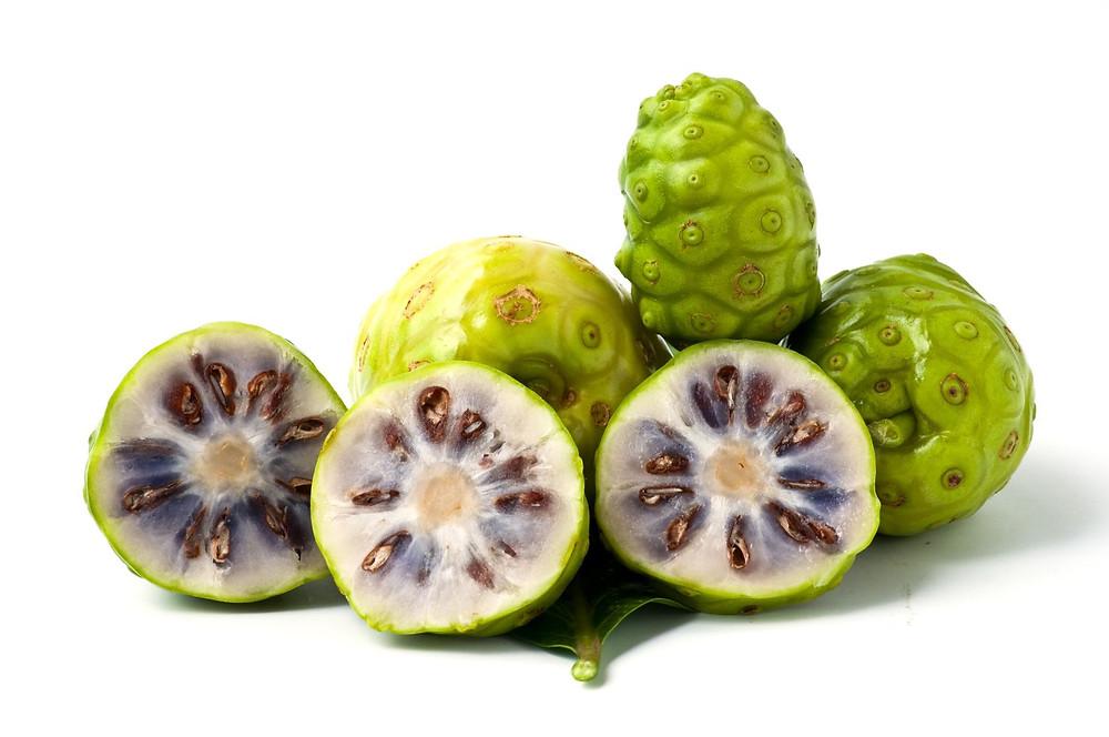 Frutto di Noni (Morinda Citrifolia)