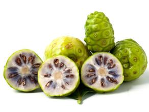 Gli antiossidanti vegetali: Morinda Citrifolia (Proxer)