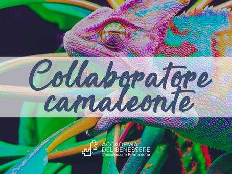 """Quali sono le caratteristiche di un collaboratore """"camaleonte""""?"""