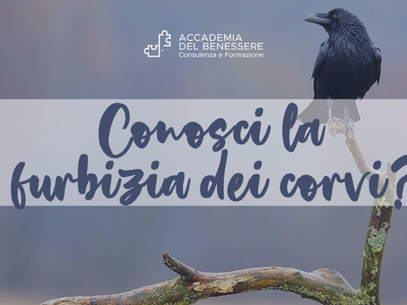 Conosci la furbizia dei corvi?