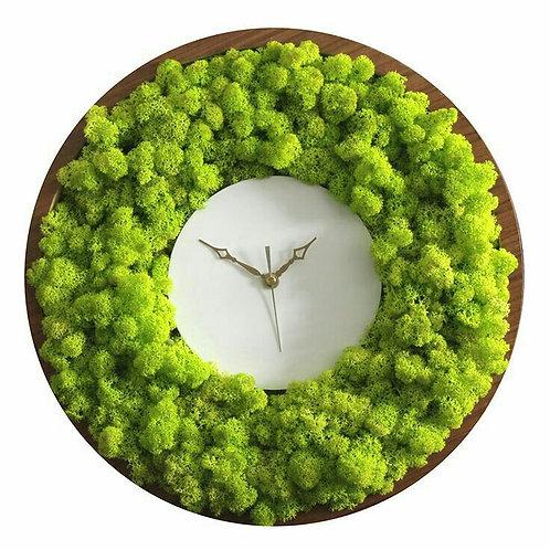 Часы из мха в корпусе