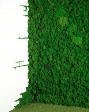 фитостены мох идеально вписываются в стиль лофт