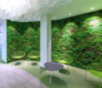 фито-стена из стабилизированного мха кочек и растений
