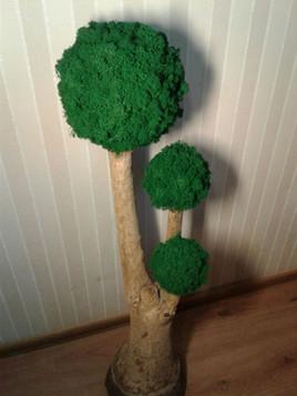 Дерево с топиари из мха