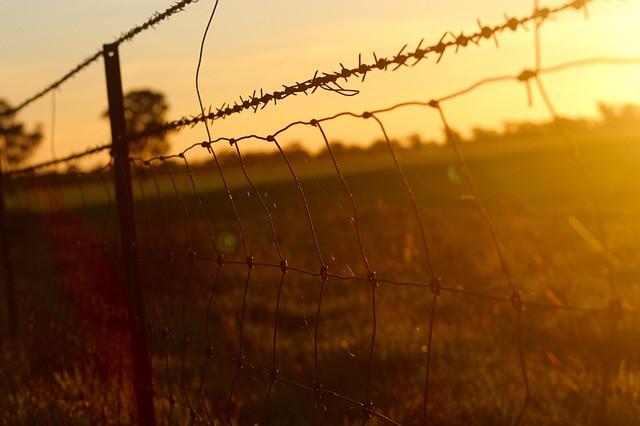 Aita ja piikkilankaa niityllä, kun aurinko laskee