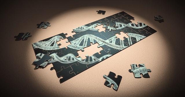 Tumma ja keskeneräinen palapeli DNA:a