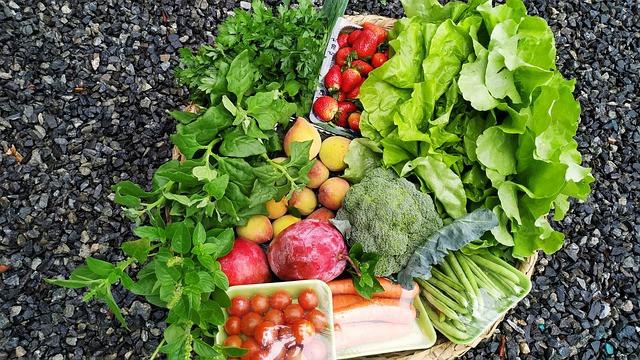 Salaattia, mansikoita, parsakaalia, porkkanoita, yrttejä ym. harmaan soran päällä.
