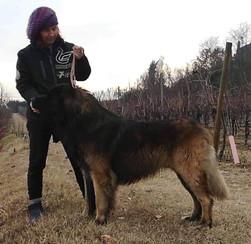 Cristina con Golia