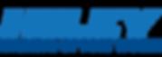 Hiley-Hyundai-FTW.png