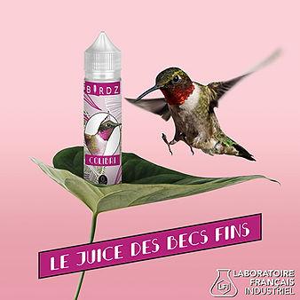 Reseaux_BIRDZ_Colibri-03.jpg