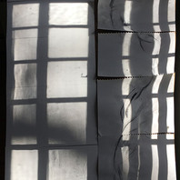windowpane 42