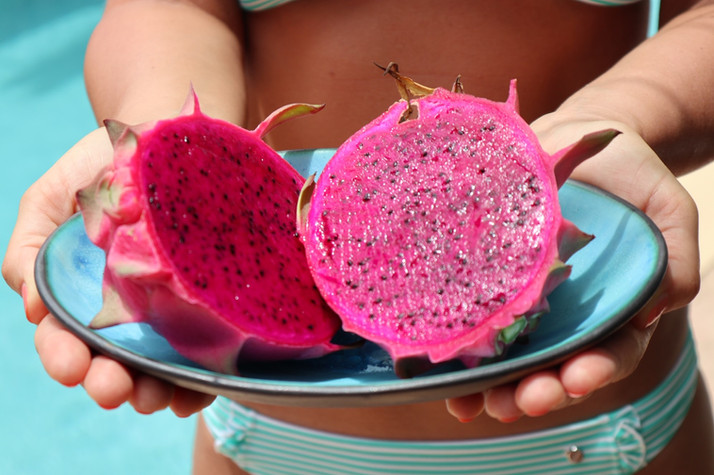 Homegrown Dragon Fruit.jpg