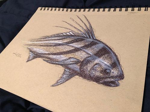 Rooster Fish Original