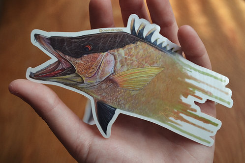 Watercolor Series Hogfish Sticker