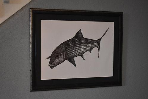 Bonefish Original