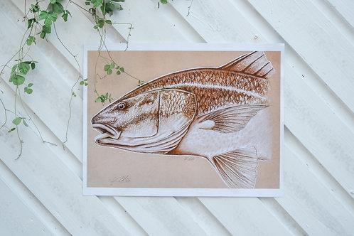 Redfish Print