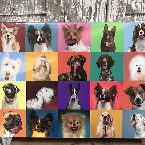 Dog Portraits Puzzle