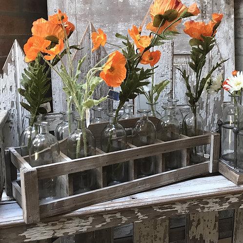 Vintage Bottle Vases in Crate