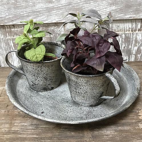 Triple Teacup Planter