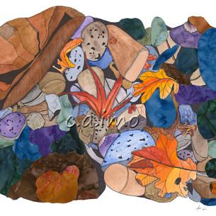 Leaves on Rocks 8