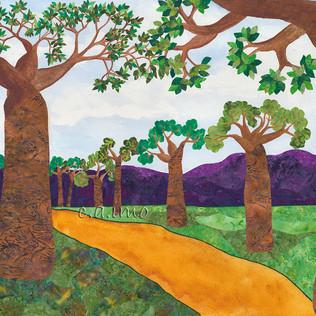 Baobab Trees.jpg
