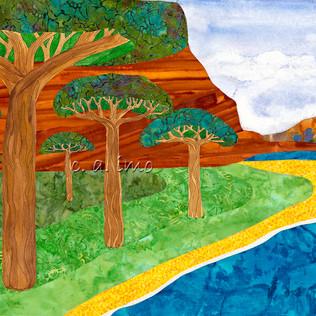 Baobob Grove.jpg