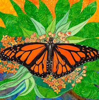 Butterfly in a Bouquet