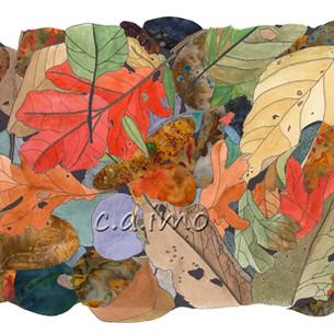 Leaves on Rocks 2