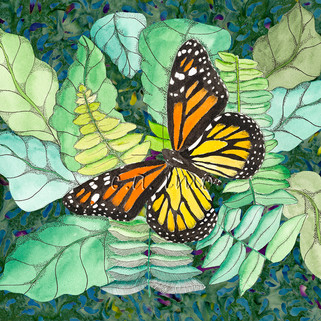 Butterfly in the Greens