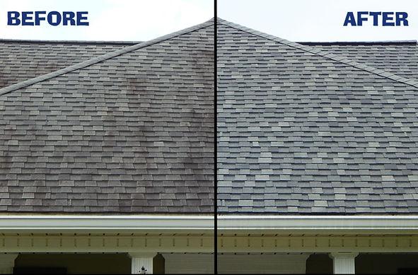 roof-2_edited.jpg