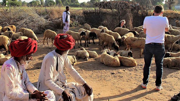 Pushkar -farm stay.jpg