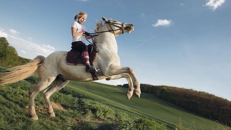 Jeju Island- Horseback Riding.jpg