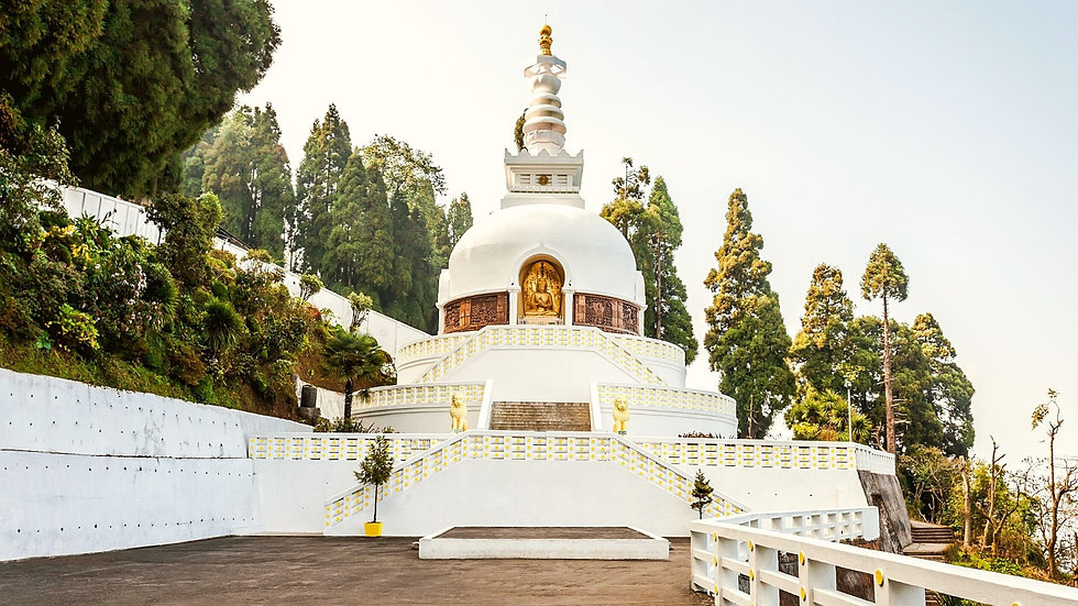 Meditation at Peace Pagoda .jpg