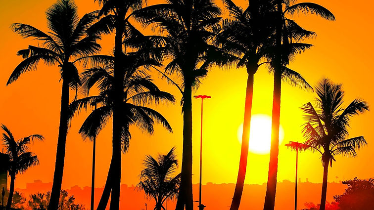 Stroll around the Promenade Beachfront i