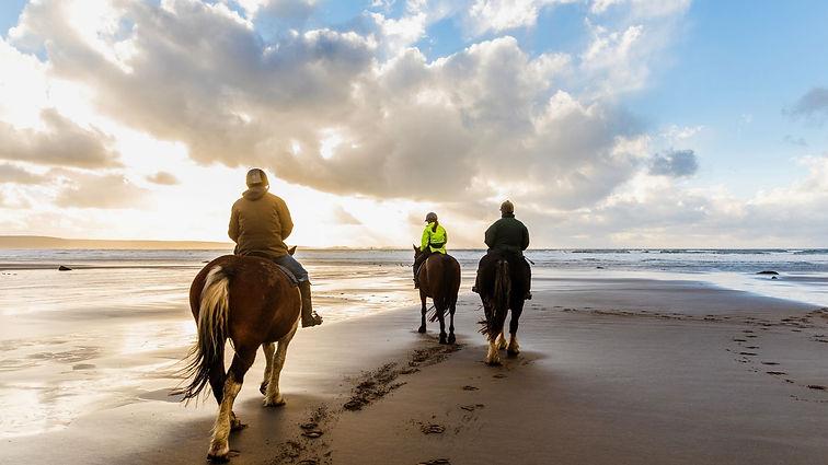 Manama - Sunset Arabian Horse Riding .jp