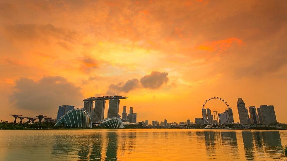 Singapore City Tour + City Hunt.jpg