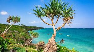Beaches (3).jpg