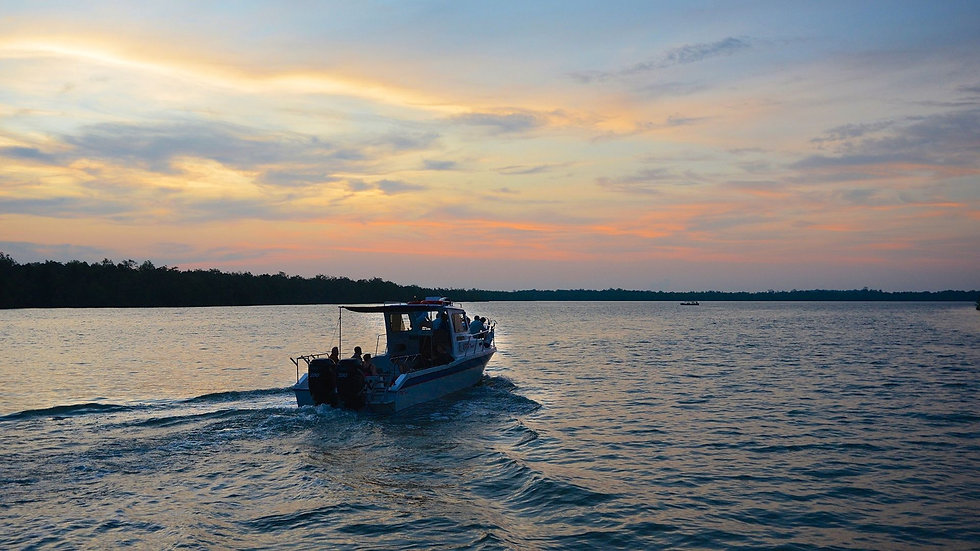 Boat ride to the estuarine of Santubong