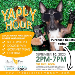 Yappy Hour!