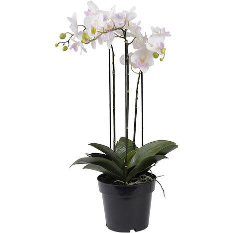 Faux White Orchid In Black Pot 71cm.jpg