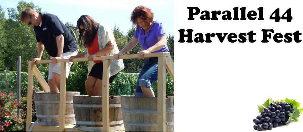 P 44 Harvest Fest.jpg