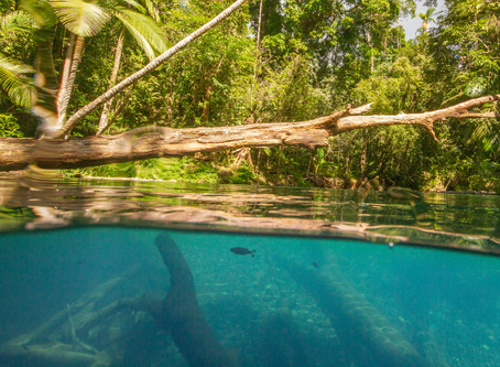 Shooting split shots at the Daintree Blue Hole