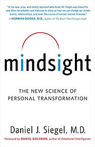 book mindsight.jpg